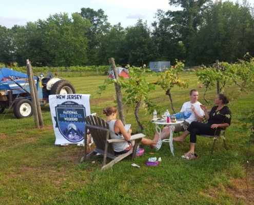 Relax at the winery