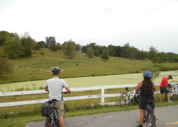 bike path next to farm