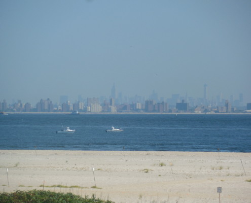 Distant NYC skyline