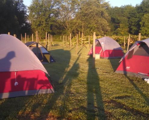winery camping