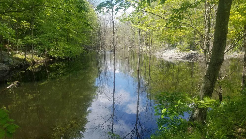 Quarry pond