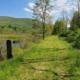 Catskill Scenic Trail mile marker