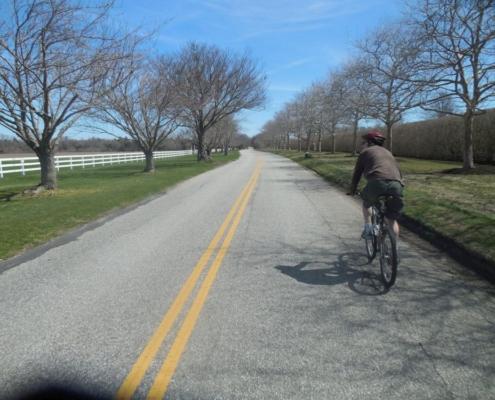 Hamptons Bicycle