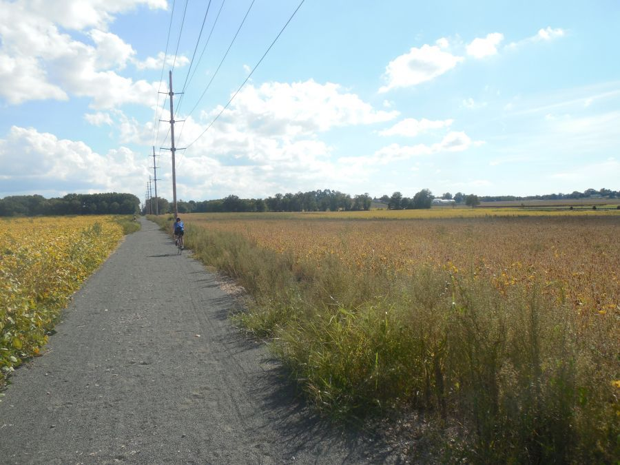 UTT Trail