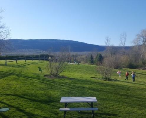 Vineyeard picnic area