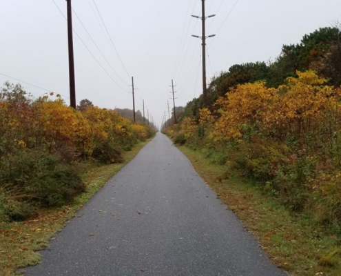 Cape May New Jersey bike path