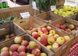 Fresh farmers market apples